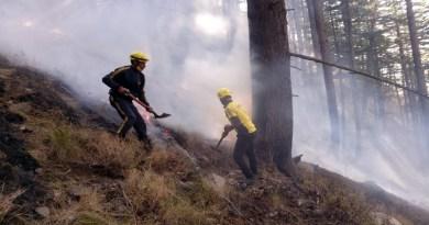 उत्तरकाशी के धराली इलाके में जंगलों में आग का तंडव देखने को मिला है। शुक्रवार को गंगोत्री रेंज के धराली गांव के जंगलों में अचानक आग लग गई।
