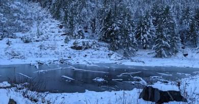 उत्तराखंड में पहाड़ों पर हो रही बर्फबारी और मैदानी इलाकों में हुई बारिश से ठिठुरन बढ़ने लगी है।