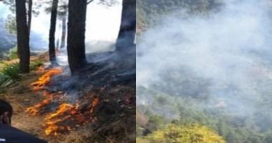 उत्तराखंड के अल्मोड़ा में एक अजीब घटना घटी है। यहां एक कोरोना से संक्रमित महिला की चिता की आग ने पूरे जंगल को जला दिया है। आग इतनी भयानक थी कि 24 घंटे बाद उस पर काबू पाया जा सका।
