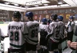 Hockey and Life