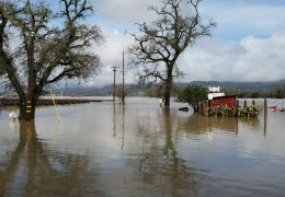 Live – Alexander Valley Flooded by Russian River
