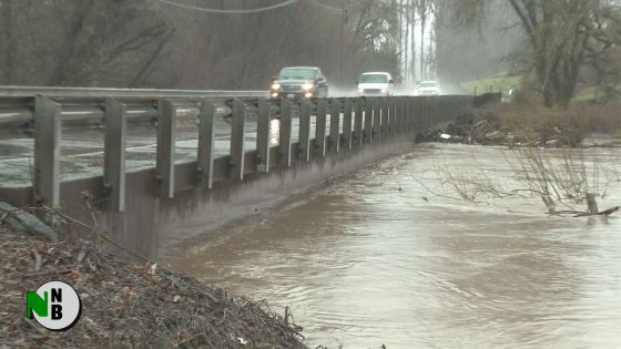 Live in Guerneville as Russian River Floods