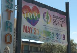 Pride in the Park Draws Hundreds