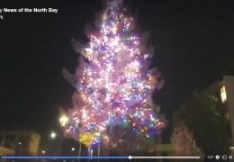 LIVE: Winter Lights Tree Lighting, Downtown Santa Rosa