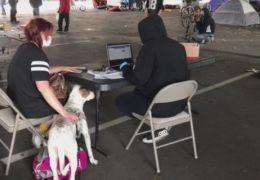 Volunteers Help Unsheltered Community File for Stimulus Benefit