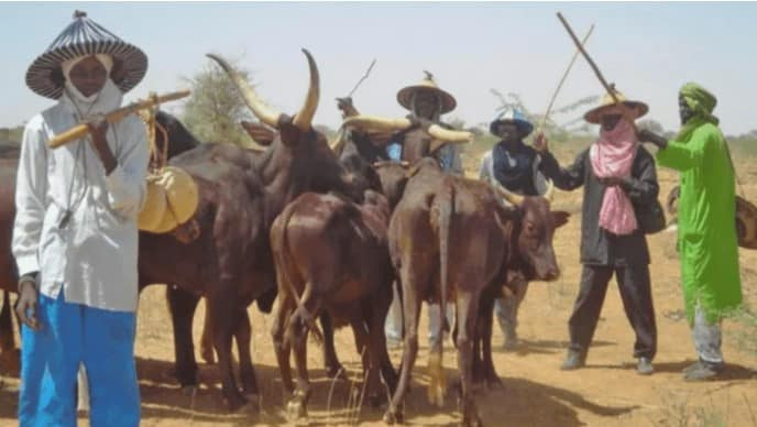 Governor Ugwuanyi Signs Anti-Open Grazing Bill Into Law