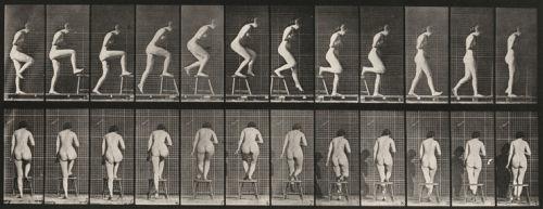 """Eadweard Muybridge, """"Plate Number 188. Dancing (fancy)""""(1887)."""