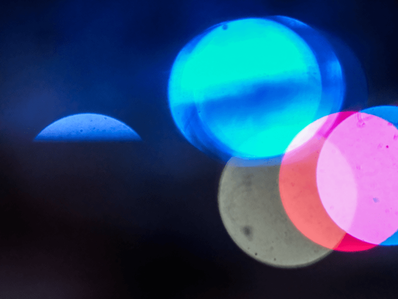 blue, red, and white police lights
