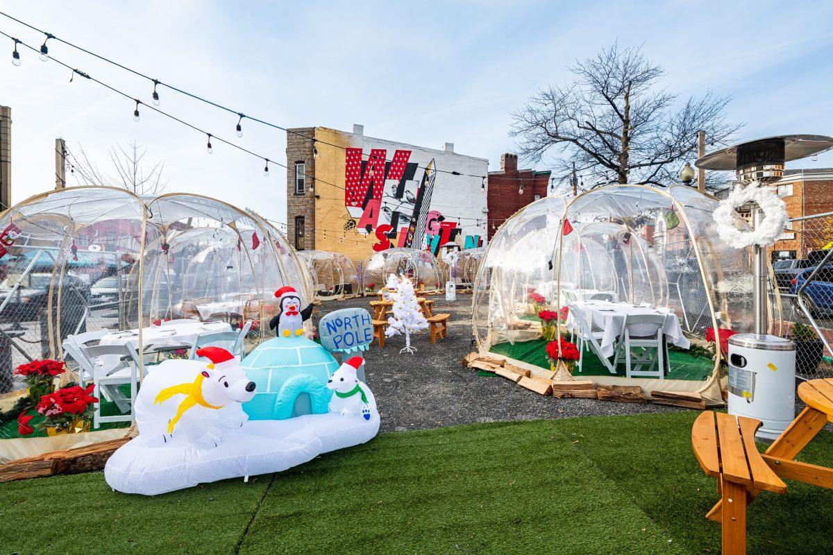 Igloos at HalfSmoke's Winter Wonderland