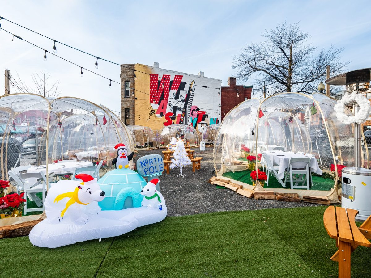 Igloos at HalfSmoke's Winter Wonderland