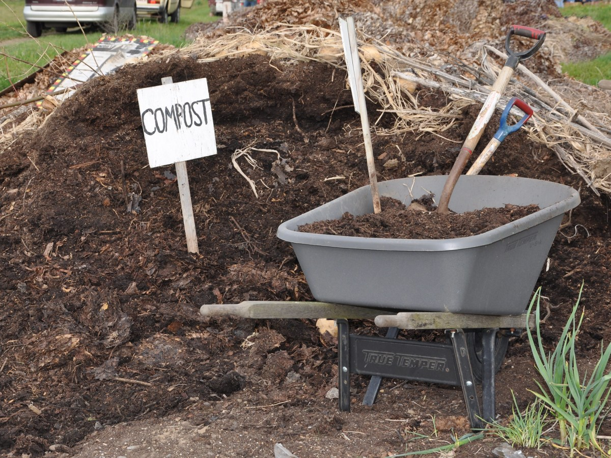 Compost, like the bokashi composting workshop