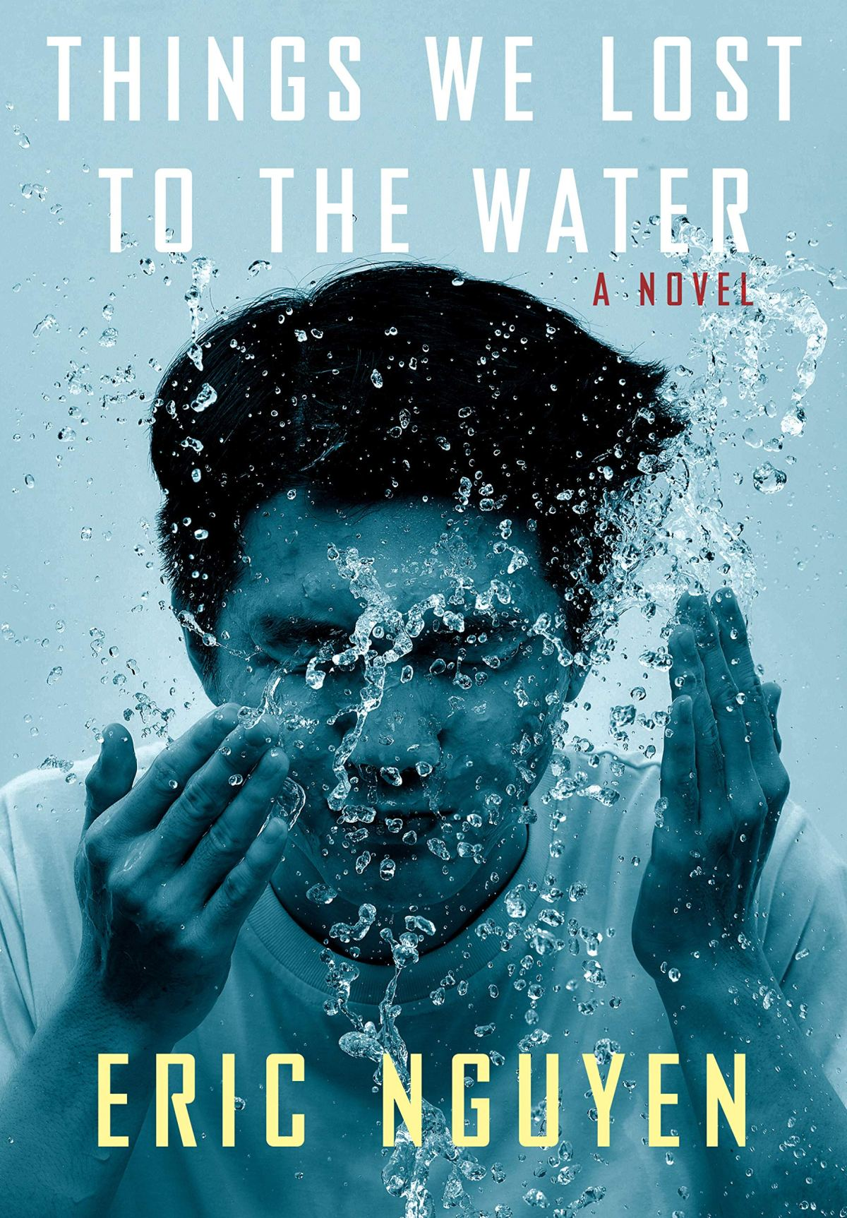 The cover of Things We Lost to the Water.