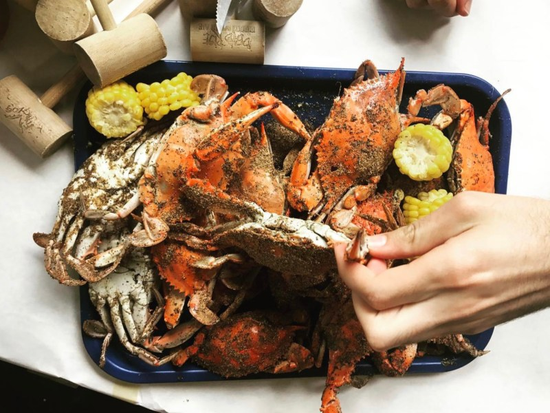 Person eating crabs