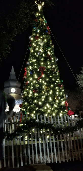 Christmas tree lighting in the town square