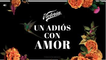 Victoria Cempasúchil, la nueva edición especial de Cerveza Victoria para  celebrar el Día de Muertos - News Report MX