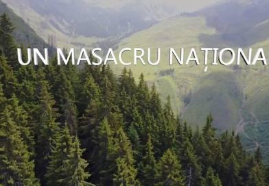 UN MASACRU NAȚIONAL. Stop tăierilor în parcurile naționale!