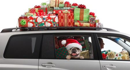 Fancy A Holiday Trip Travel By Car