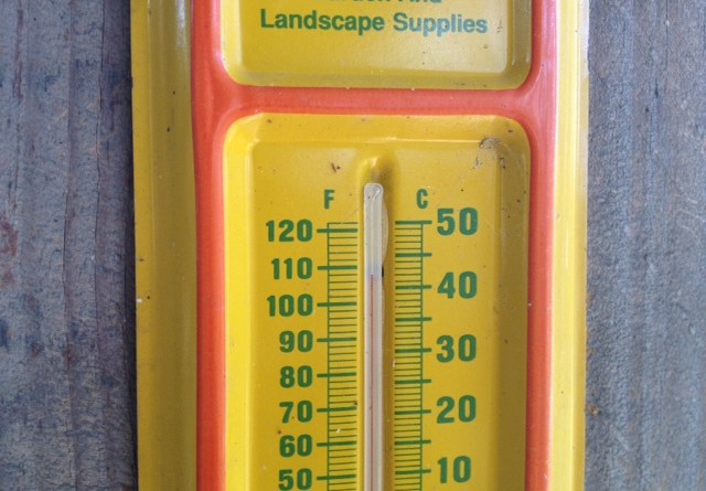 (Image) thermometer
