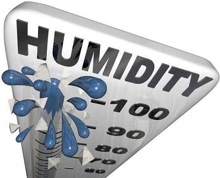 (Image) Humidity Guage