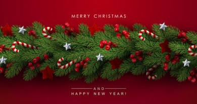 (Image) Merry Christmas and a Happy New Year card