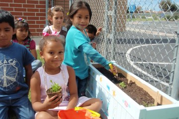 Students working at a campus garden