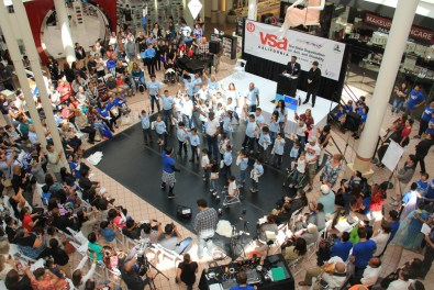 VSA festival crowd from above