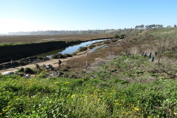 Volunteers cleaning Upper Newport Bay