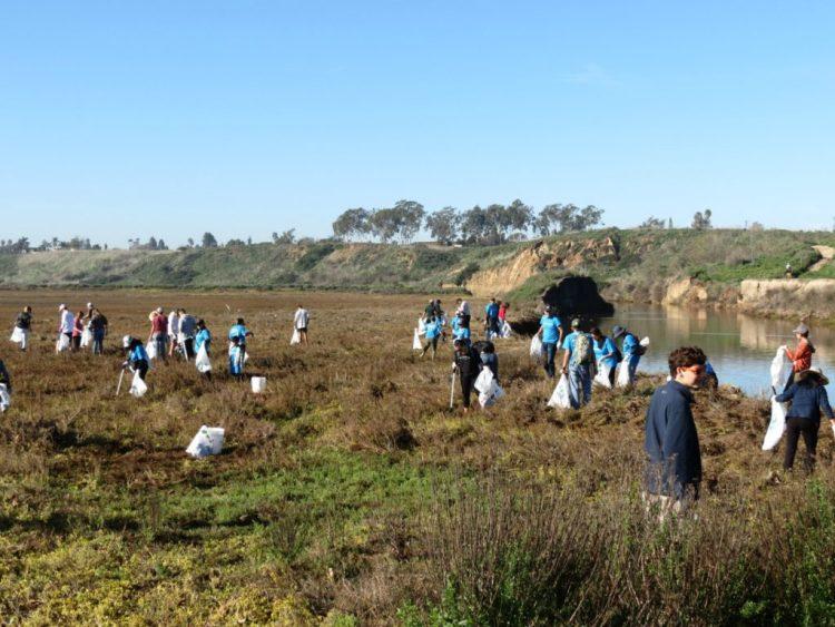 Volunteers cleaning Upper Newport Bay