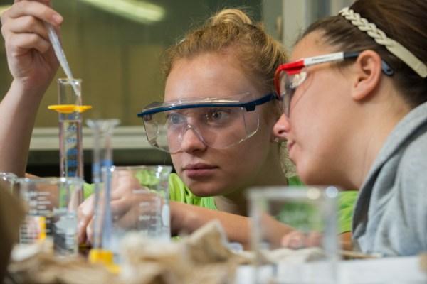 Unl Selected Beckman Scholars Program In Life Sciences
