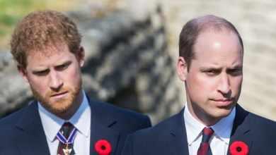 Photo of «Уильям считает, что Гарри не уважает королеву. Гарри считает, что Уильям груб по отношению к Меган» — сообщил инсайдер