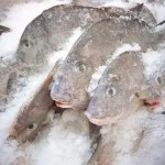 U.S woman busted with cocaine in frozen fish at CJIA