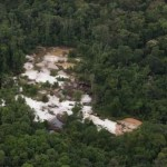 No exception to tackling mining in protected areas   -Harmon
