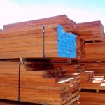 Guyana to donate 300 tonnes of lumber to Hurricane ravaged islands