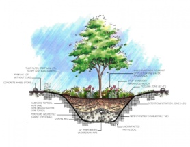 This illustration is an example of a bioretention cell that could be used in a parking lot.