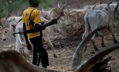 herdsmen in nigeria