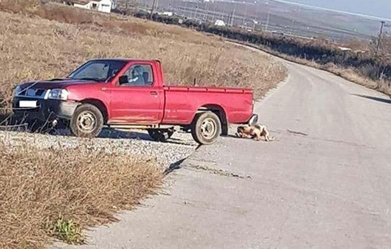 30.000 ευρώ πρόστιμο στον 75χρονο που έσερνε σκύλο με αγροτικό στη Λάρισα