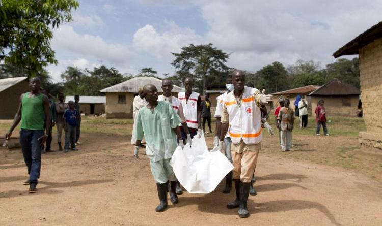 Red Cross fraud wastes $6M meant for Ebola fight in West Africa 5