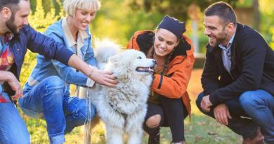Dogs more apt to bite anxious, neurotic people 3