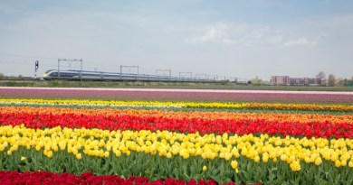 Eurostar to launch Amsterdam service in April 4