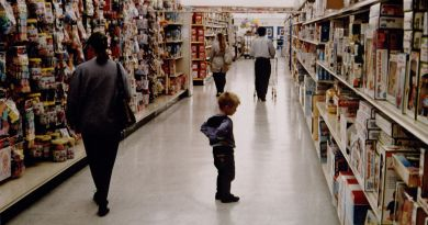 Children of the '80s and '90s Will Miss Toys R Us. So Will Our Kids, Eventually. 2