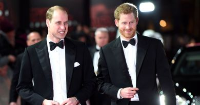 Prince Harry Asked Prince William to Be His Best Man at the Royal Wedding 3