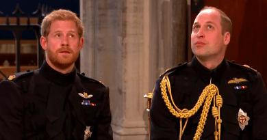 A 'Bad Lip Reading' of Prince Harry and Meghan Markle Is the Royal Wedding Chaser We All Needed 3