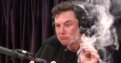 Elon Musk Smokes Weed, Makes Ass of Self in Interview with Joe Rogan 4