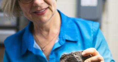 A Rock Used as a Doorstop Turned Out to Be a Meteorite Potentially Worth $100,000 3
