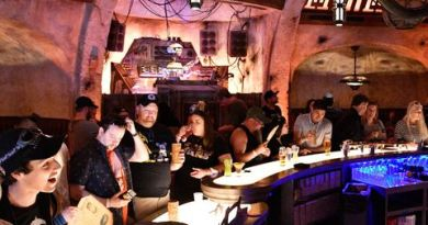 Star Wars: Galaxy's Edge Won't Live Up to Your Fan Boy Dreams. But the Cantina Is Cool. 4