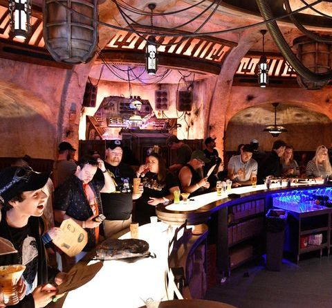 Star Wars: Galaxy's Edge Won't Live Up to Your Fan Boy Dreams. But the Cantina Is Cool. 7