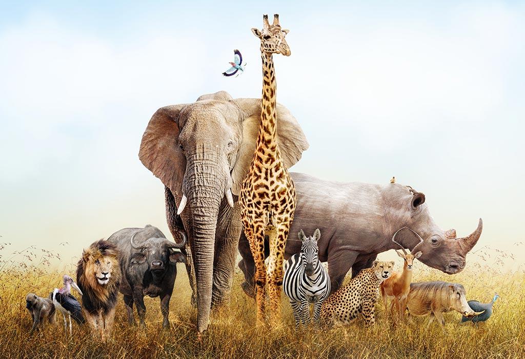 World-Animal-Day-2021-in-English