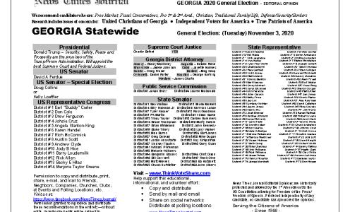 GA Statewide 2020 General