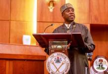 Why FG is not funding railway's old narrow gauge lines, says Amaechi