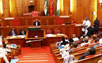 Protest: Senate dismisses calls to jettison constituency projects, vows to continue projects